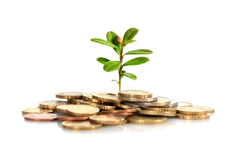 معرفی صندوق های سرمایه گذاری در بورس