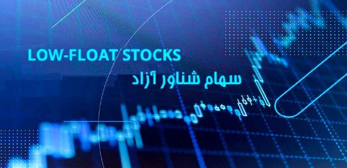 موافقت دولت با افزایش سهام شناور آزاد سهام دولتی